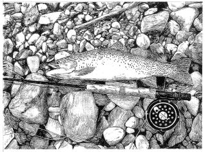 black and white line drawing of trout and fishing rod on rocks